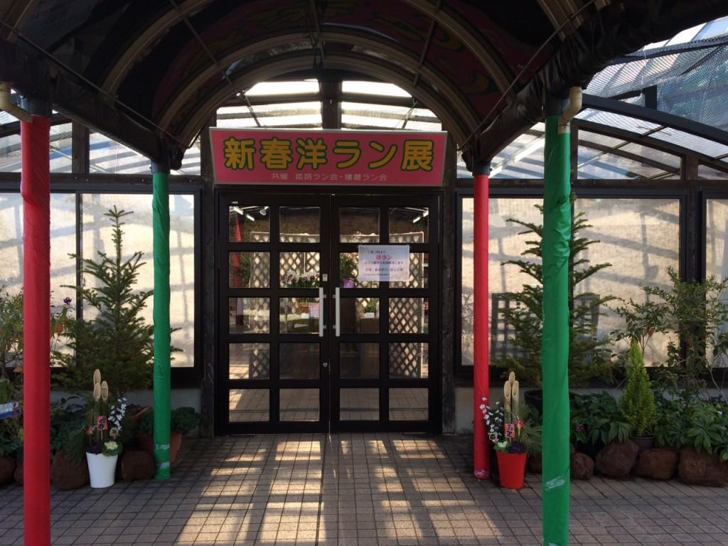 手柄山温室植物園_9315