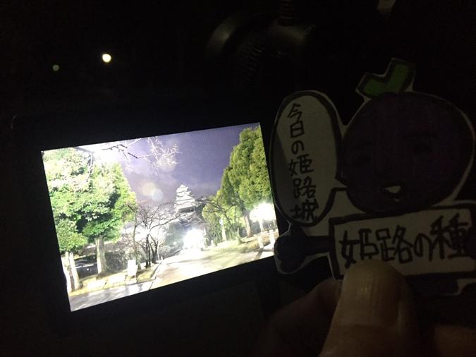 今日の姫路城_9048