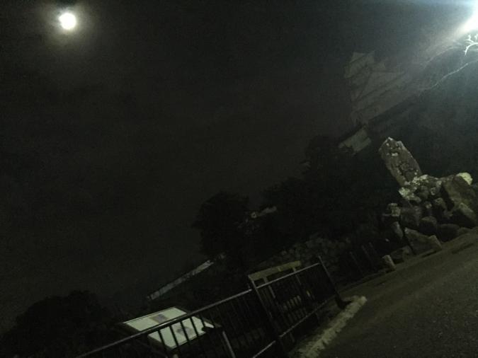今日の姫路城_3658