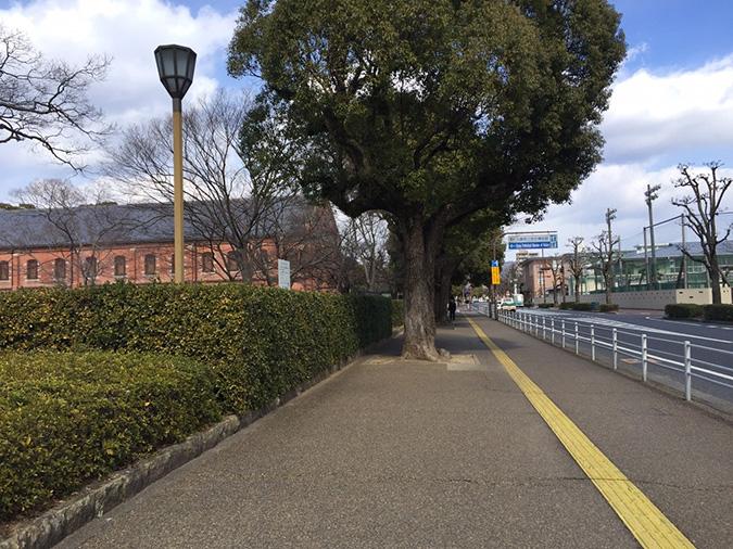 今日の姫路城2016.216_5442