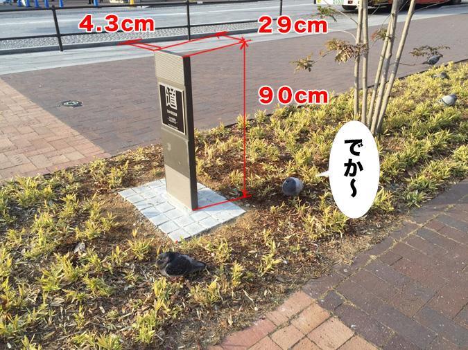大手前通りに日本の道百選の記念碑ができて_7090