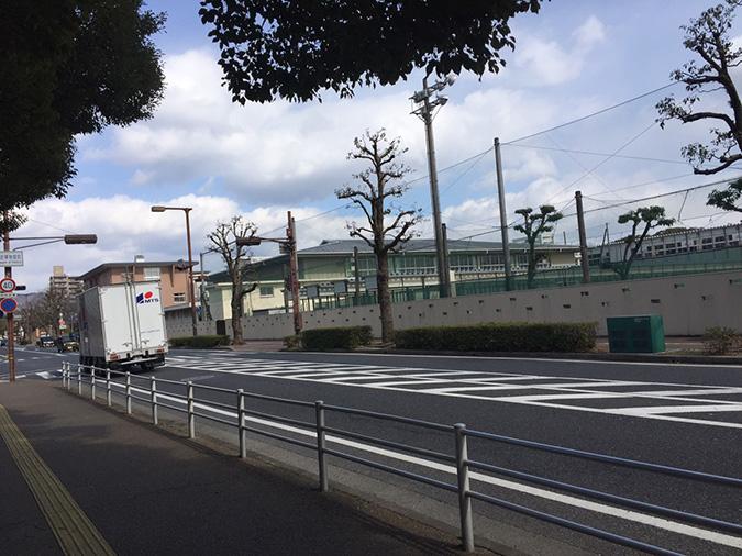 今日の姫路城2016.216_6434