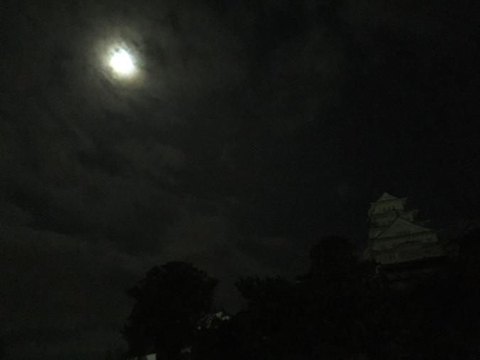 今日の姫路城_4331