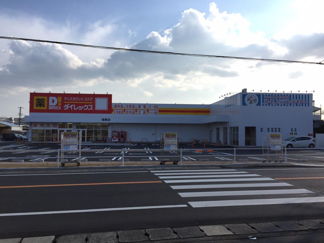 城東に薬ディスカウントストアダイレックス_808