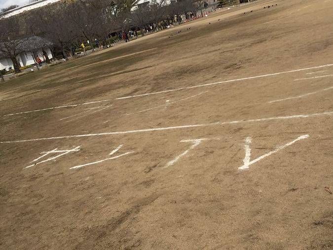 今日の姫路城-姫路マラソンの次の日_3774