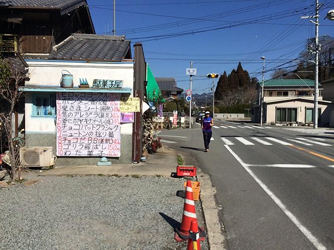 姫路城マラソン下見-2日目_8015