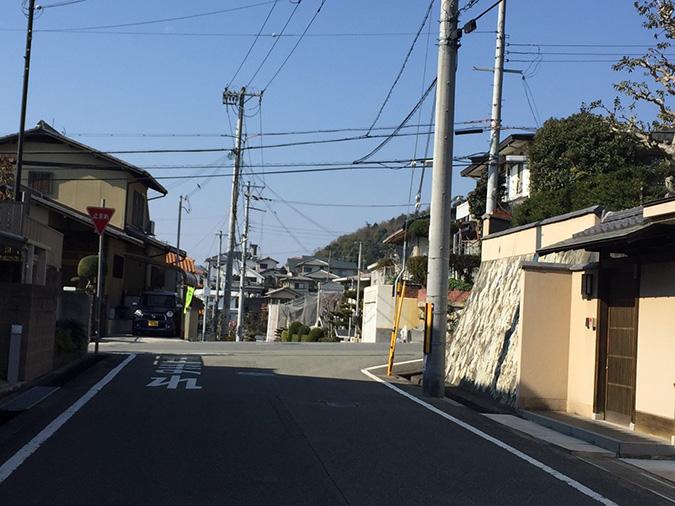 新在家から撮った姫路城_7822