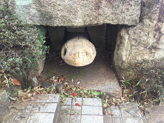 香寺総合公園のサッカーグラウンドが新く_5547