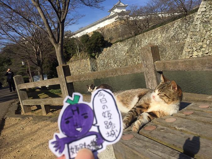今日の姫路城城_3906