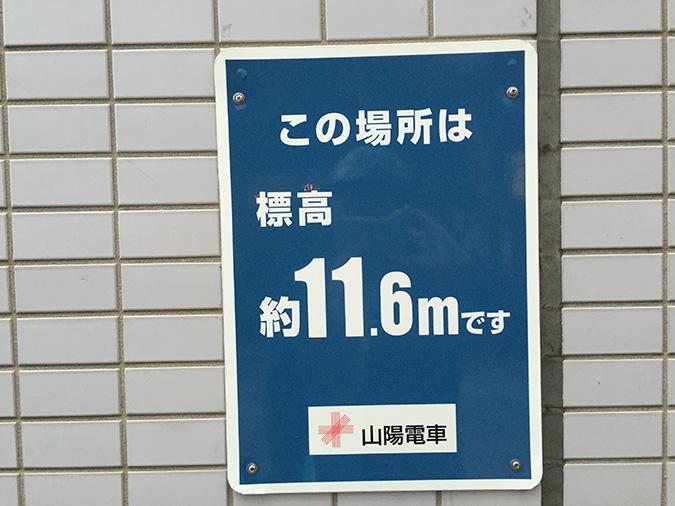 IMG_7213