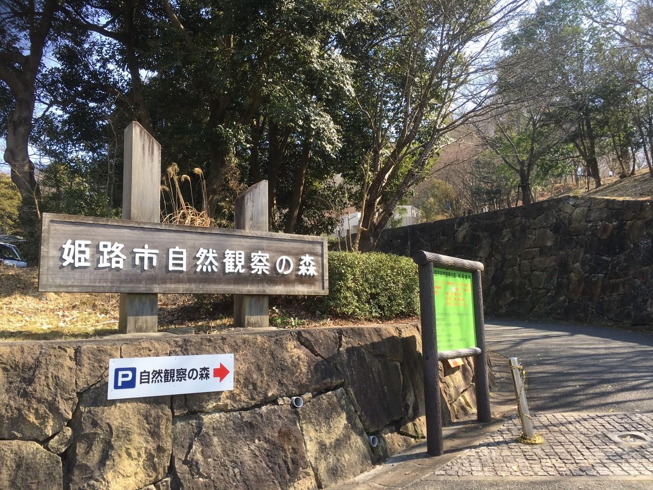 姫路科学館が大規模な改修工事をしている。_3383