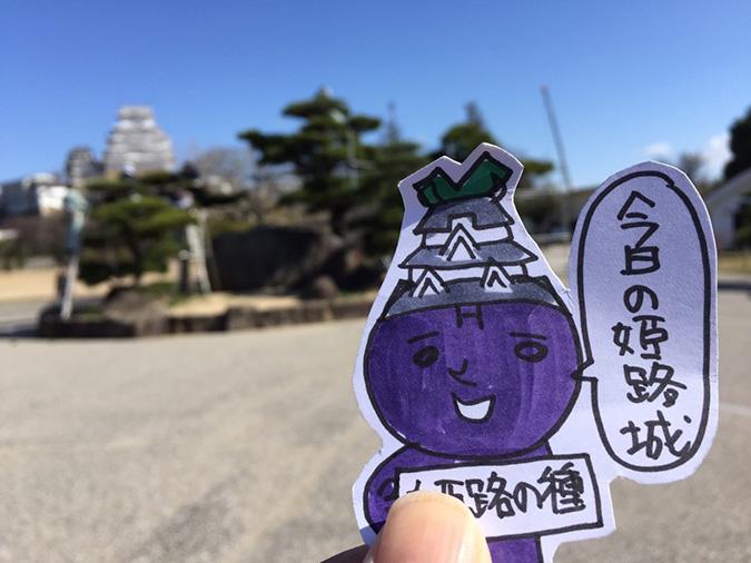 姫路城記念撮影の岩のとこを剪定してた_33