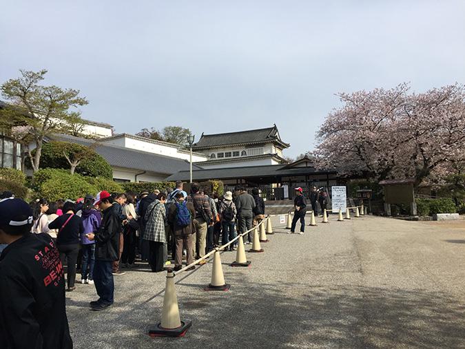 48桜散り始め_9040
