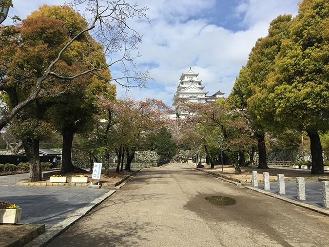 20460414今日の姫路城_892