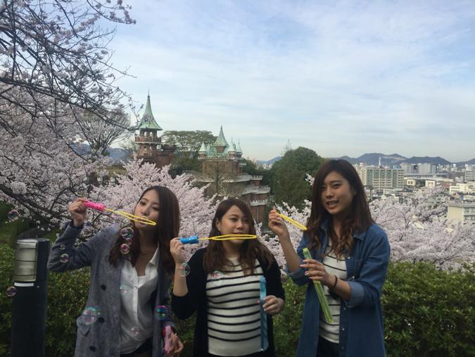 今日の姫路城手柄山の桜満開_4433