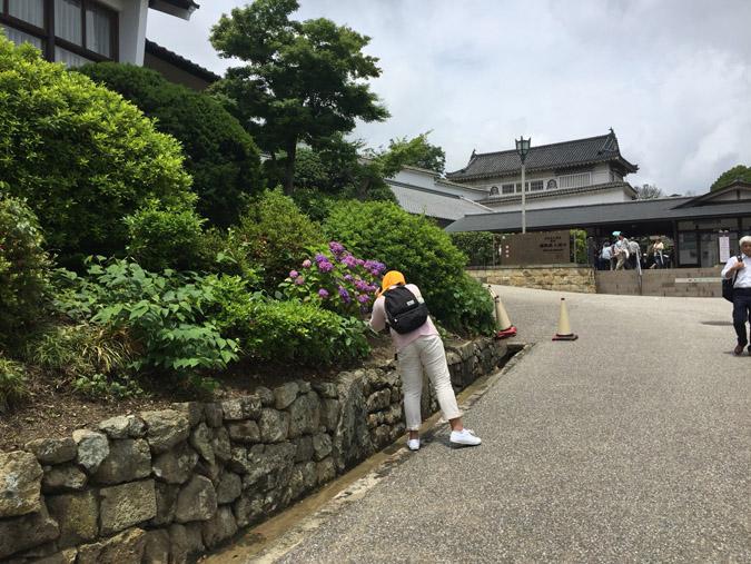 今日の姫路城0610_9347