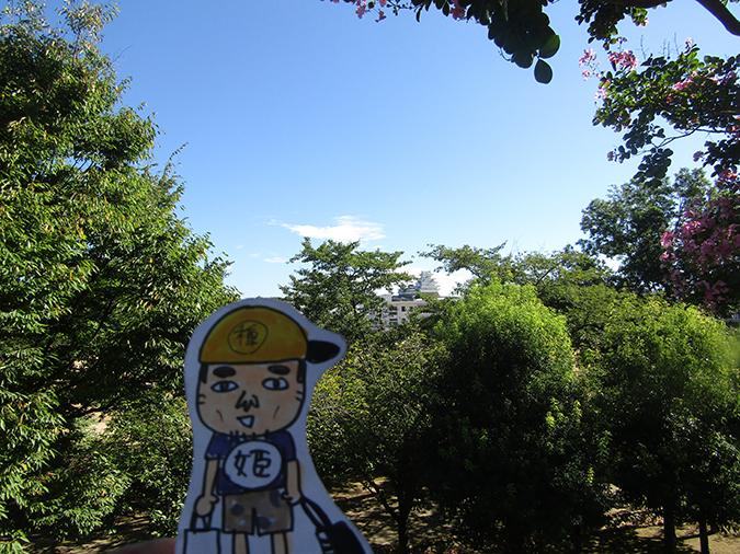 サルスベリ姫路城5