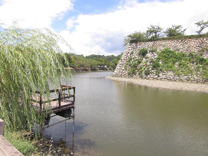 今日の姫路城水位が下がって9