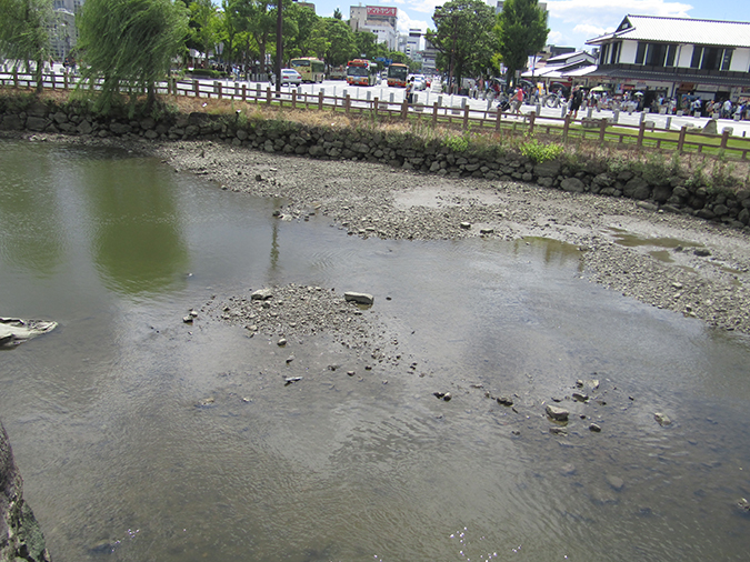 今日の姫路城水位が下がって3