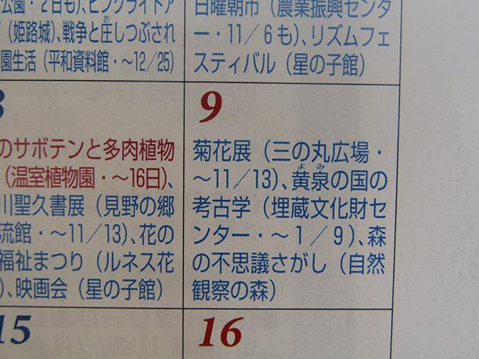 姫路城菊花展9