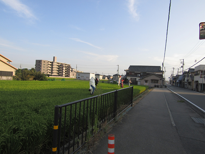 姫路の種かかし2