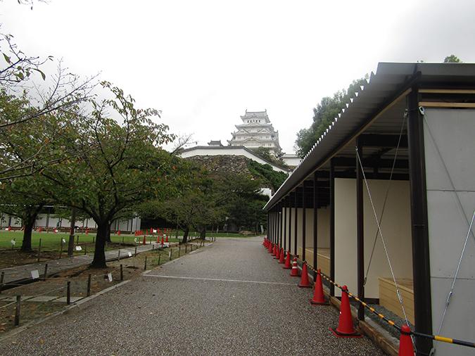 姫路城_菊4