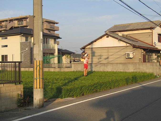 姫路の種かかし16
