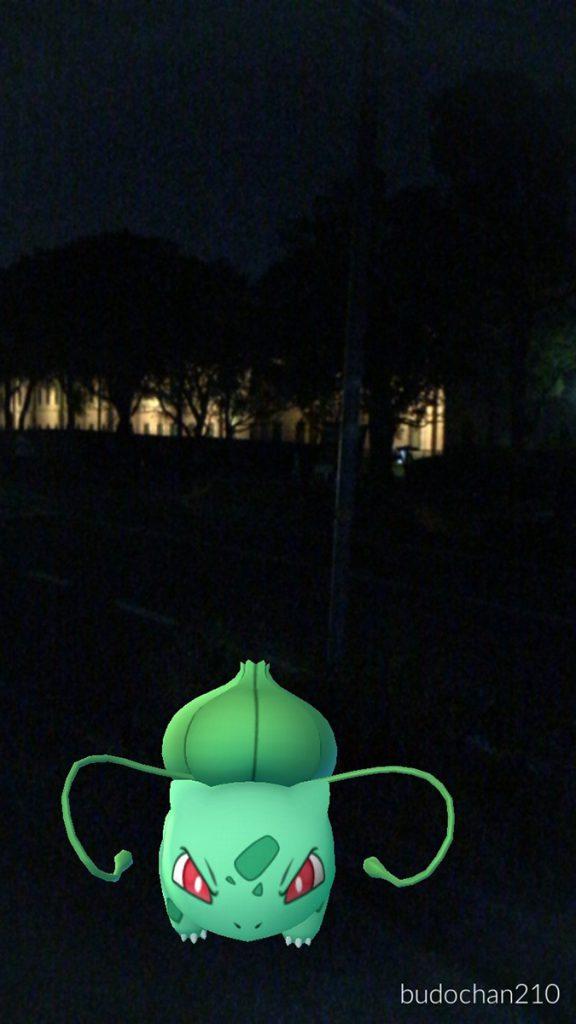 姫路ポケモンの種12