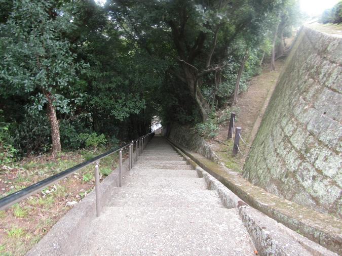 姫路城男山紅葉25