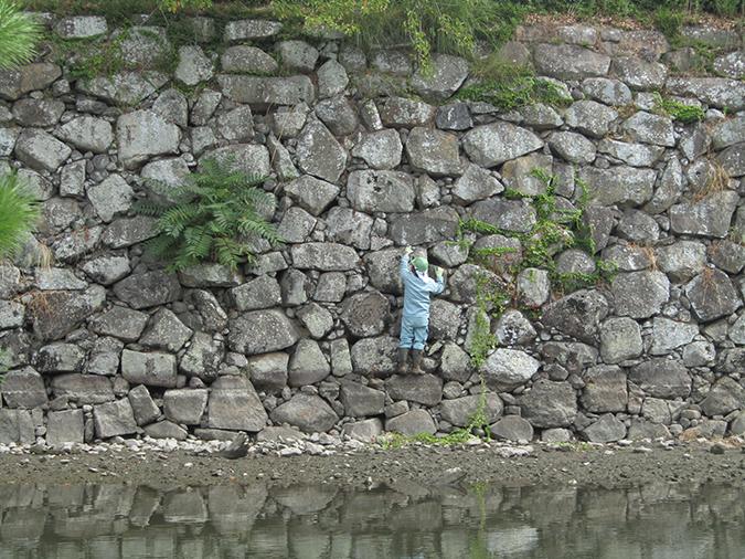 姫路城お堀の掃除始まってる