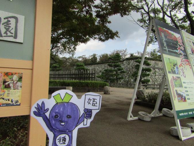 姫路城秋の大茶の湯好古園2
