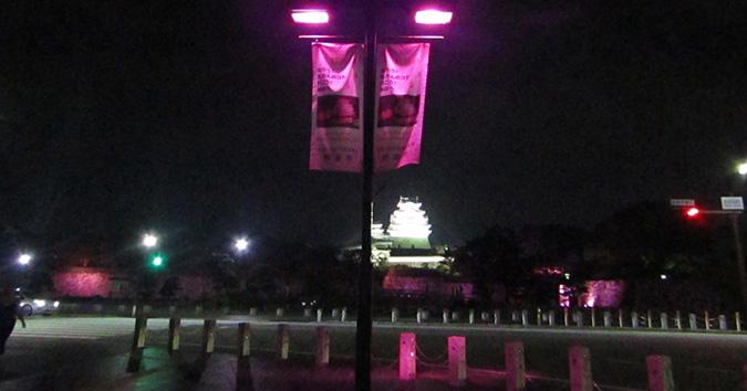 姫路城次の日もピンク