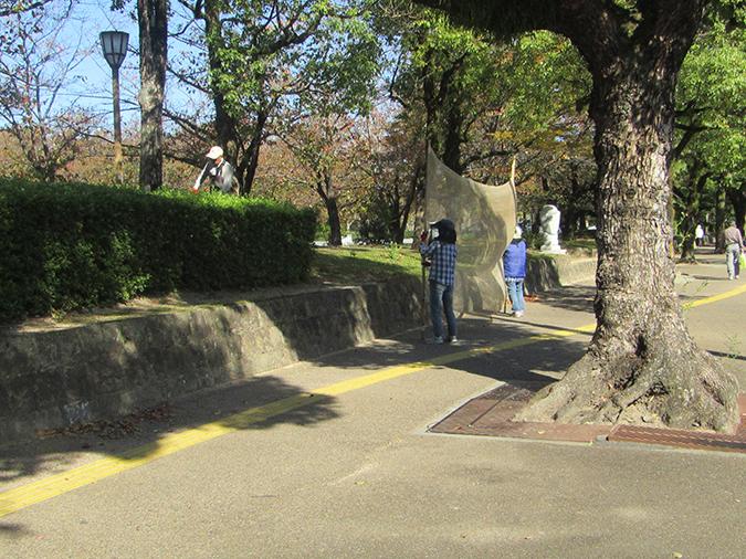 今日の姫路城捕獲