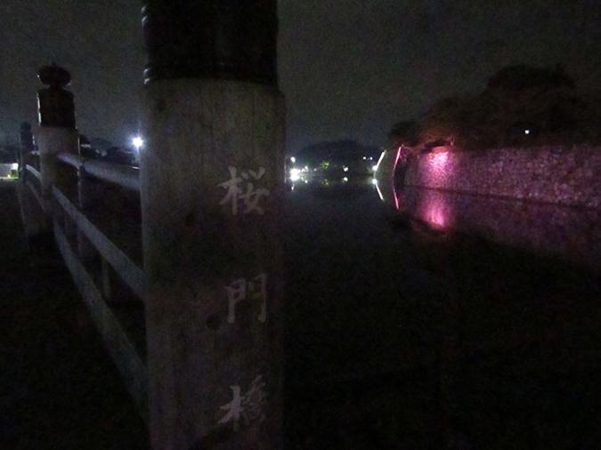 姫路城次の日もピンク9