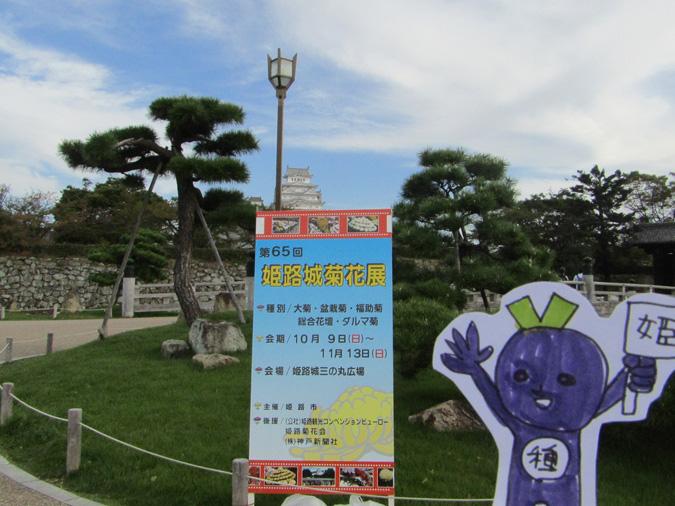 姫路城菊花展7