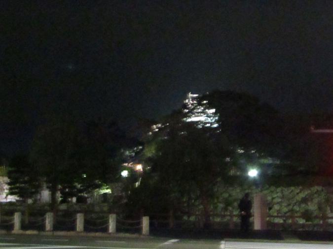 姫路城菊花展夜6