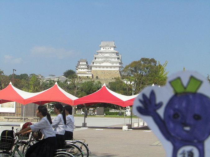 今日の姫路城イタフェス5