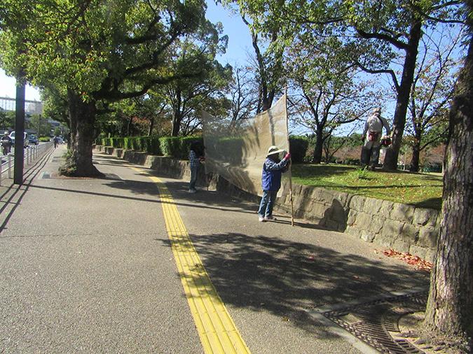 今日の姫路城捕獲7