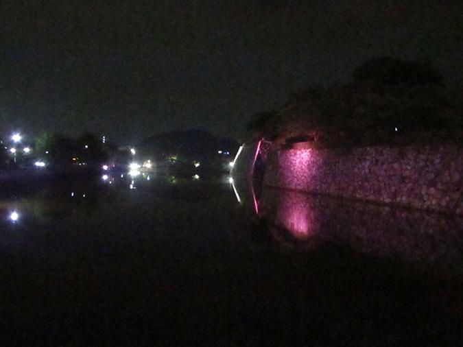 姫路城次の日もピンク7