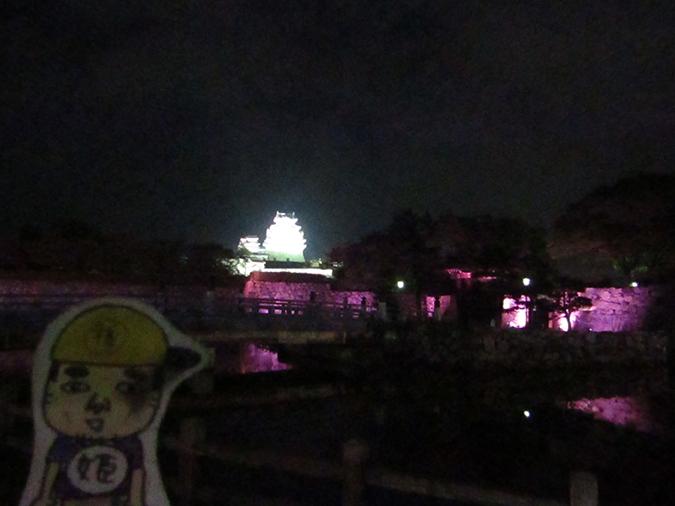 姫路城次の日もピンク3