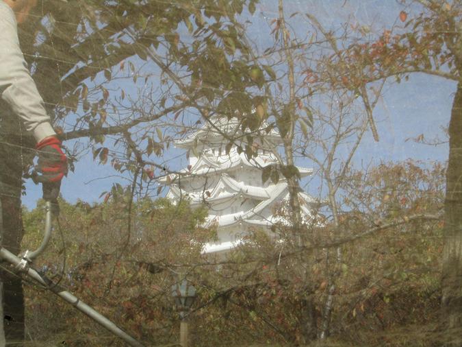 今日の姫路城捕獲5