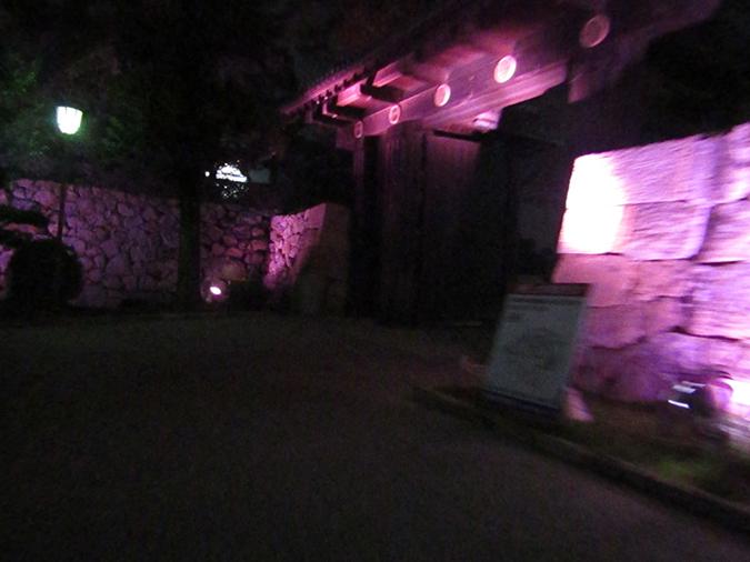 姫路城次の日もピンク5