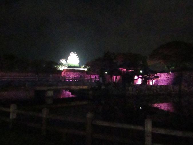 姫路城次の日もピンク2