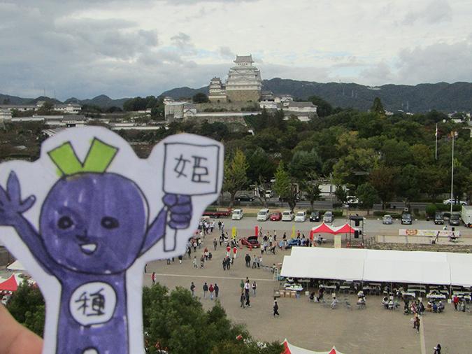 今日の姫路城20161023-25