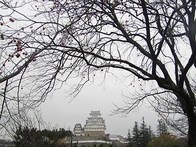 今日の姫路城268_10