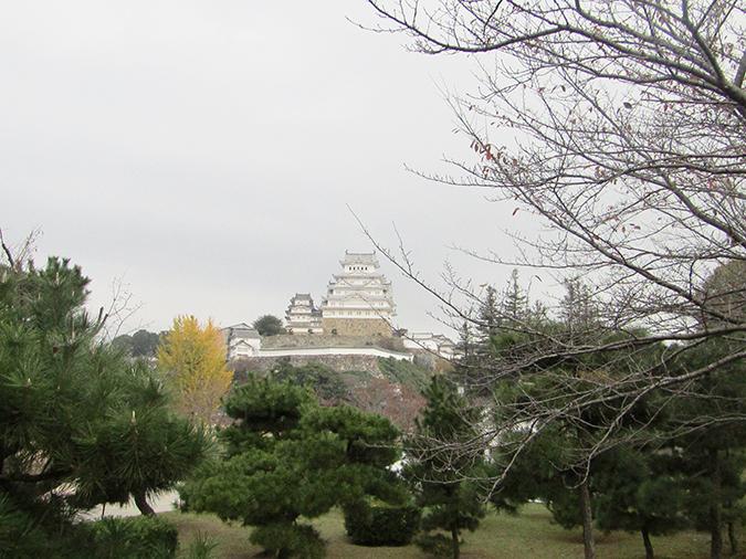 今日の姫路城268_9