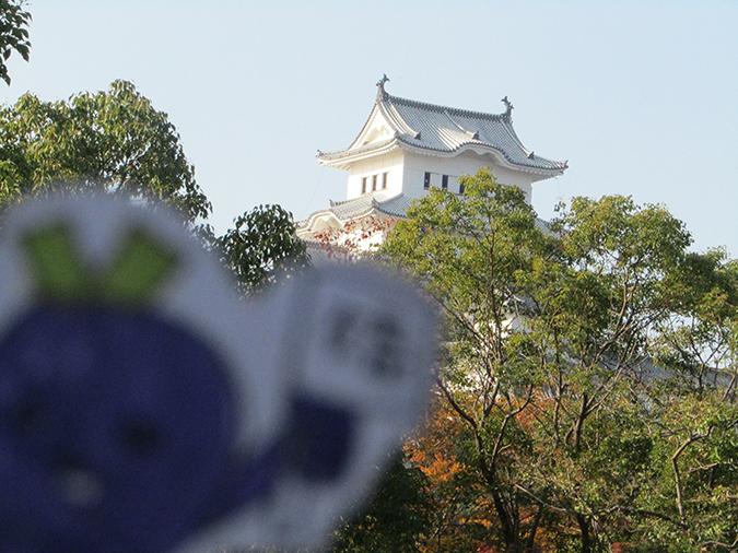 姫路図書館工事8