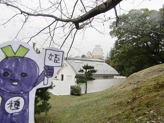 今日の姫路城276