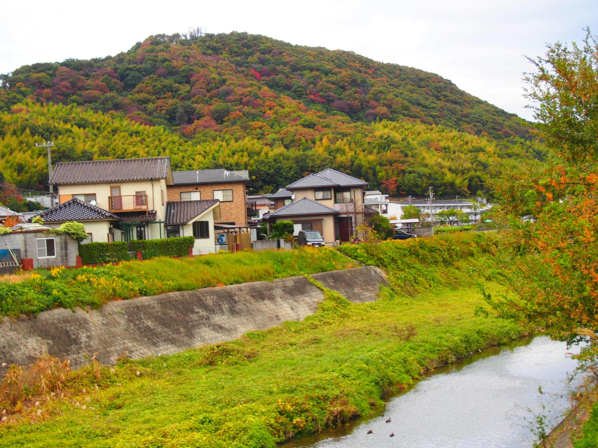 網干の田舎っぽい感じのところ【姫路の種写真部】